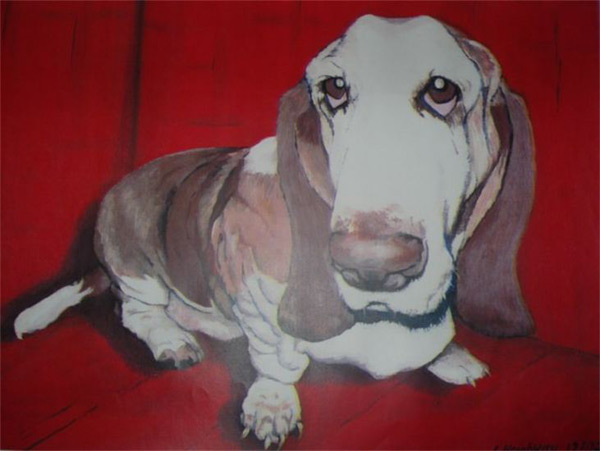 jim-heighway-pet-portraits (1)