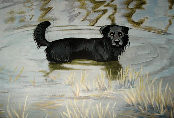 jim-heighway-pet-portraits (2)