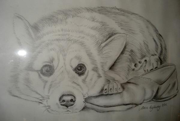 jim-heighway-pet-portraits (3)